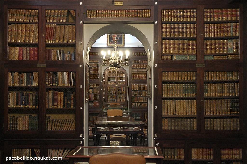 Biblioteca del ROA. Foto: © Paco Bellido